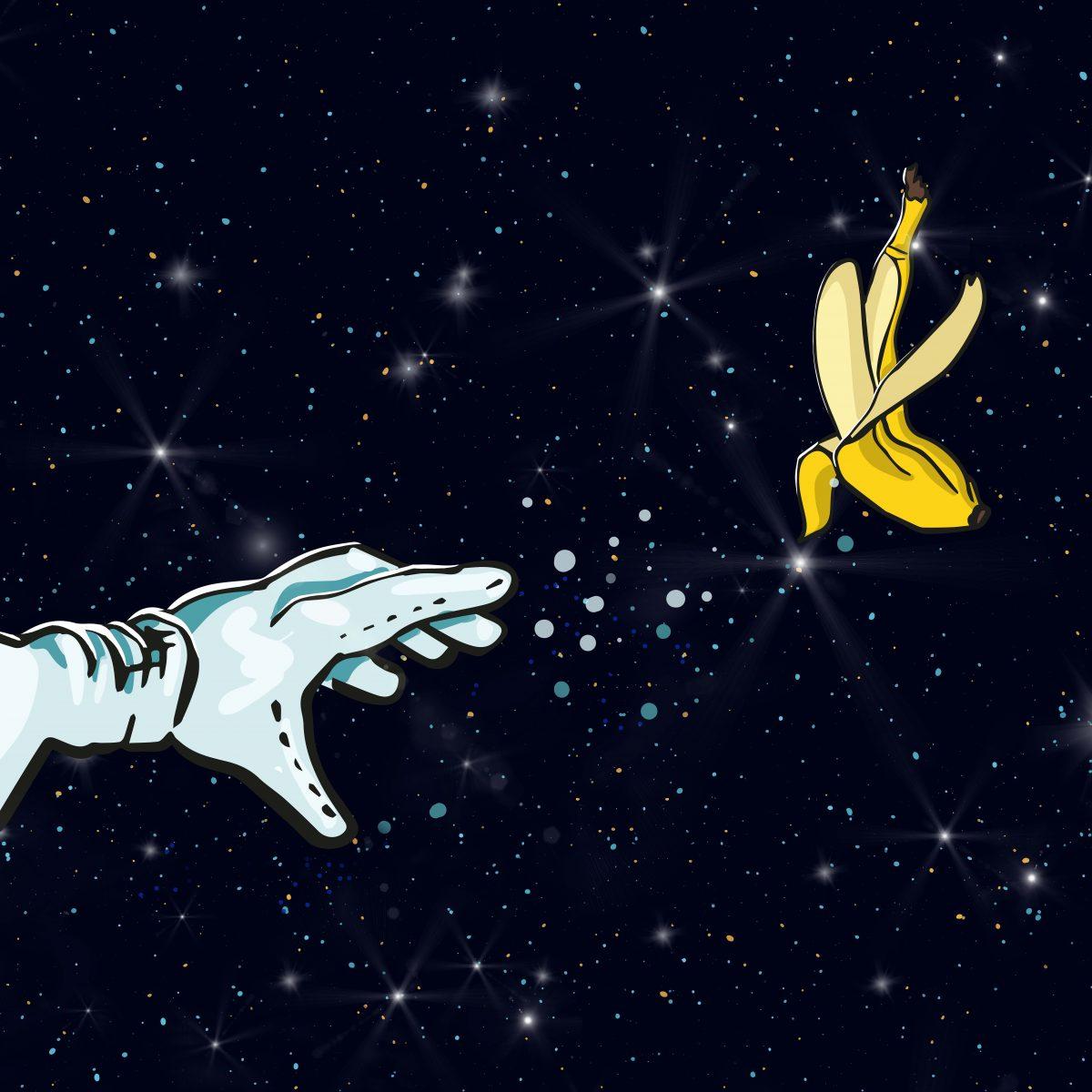 Suberbude_Spacemonkey_HofmannJulia_HAND